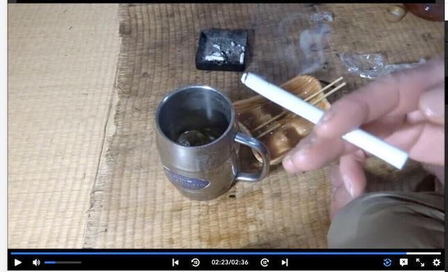 画像はwawawaさんの動画から(ニコニコ動画内)