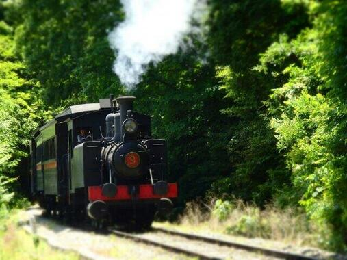 博物館明治村の9号蒸気機関車。鬼滅の刃の舞台の大正時代初期はまだこの機関車と同じ連結器を装備していた」