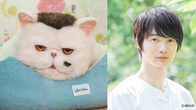 主人公・神田(草刈正雄)の愛猫・ふくまるの声は神木隆之介さん(C)「おじさまと猫」製作委員会