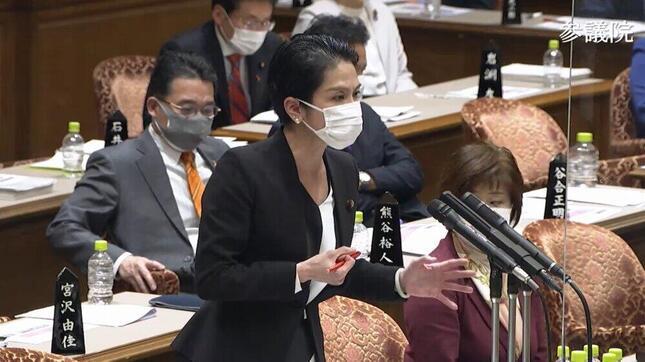 参院予算委で質問に立つ立憲民主党の蓮舫代表代行(写真は参院インターネット中継から)