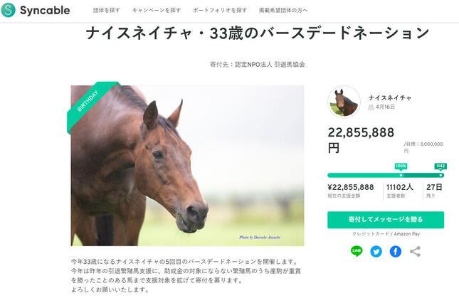 引退馬「ナイスネイチャ」の誕生日にあわせて寄付を募る「バースデードネーション」が実施された