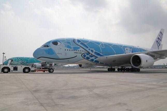 全日空(ANA)のエアバスA380型機。ホノルル便で運航されるのは20年3月以来、約1年4か月ぶりだ