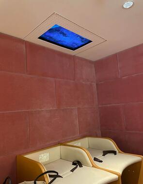 天井にテレビがある(画像:@sayurice_ さん提供)