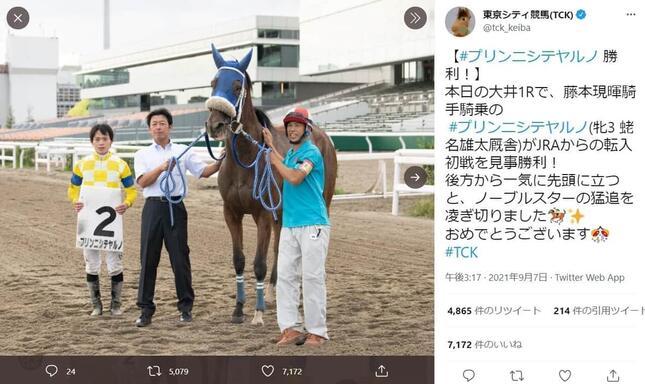 プリンニシテヤルノ初勝利を伝える東京シティ競馬のツイート
