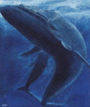 鯨肉の在庫はだぶついている?