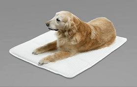 帝人ファイバーが発売する愛犬用高機能マット「タフィー」