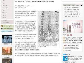 韓国の大手紙にも、写真入りで取り上げられている