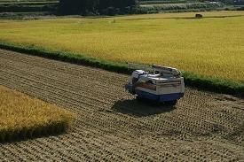 日本の食料自給率が低下している