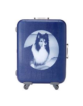 イトーヨーカ堂が受注しているオーダースーツケース(例)