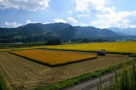 農業への参入は増えるのか(写真はイメージ)