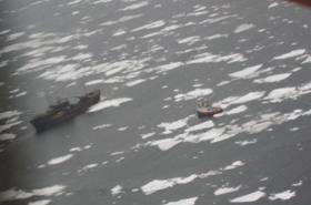 「シー・シェパード」監視船が狩猟現場に接近する様子をとらえた写真(カナダ漁業海洋省(Fisheries and Oceans Canada)ウェブサイトより)