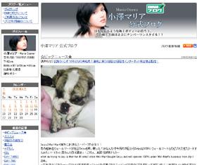 小澤マリアさんの公式ブログ