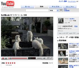 ソフトバンク「白いネコ」CM。製作中のはずなのに・・・