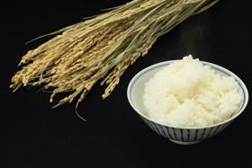 お米の購入量が増加傾向だ(写真はイメージ)