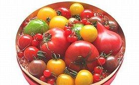 セレブ・デ・トマト「トマトの宝石箱」