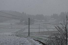 人影のない飯舘村は季節外れの雪がふっていた