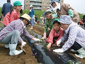 園児を一緒に苗を植える被災者たち=花巻市内の河川敷で