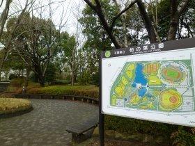 柏の葉公園では、県による除染が実施された