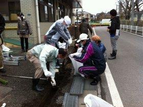 秋山浩保・柏市長も参加したプロジェクトの除染作業(写真提供:つながろう柏!明るい未来プロジェクト)