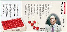 蓮實氏が登場するサクランボの広告。