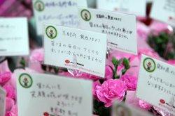 大阪、京都、千葉、埼玉・・・各地から被災地へ寄せられたメッセージ(2012年4月27日 福島県相馬市)