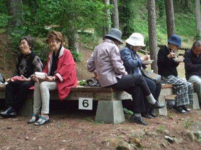 山菜の天ぷら、肉じゃが、酢の物、トン汁…。スタッフが腕を振るった料理の数々にみんなピクニック気分=戸塚森森林公園の野外休憩場で