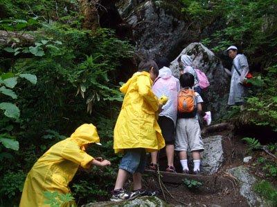 雨に濡れた山道に足を滑らせないよう、目指すはヒカリゴケ=薬師岳入口近くの山道で