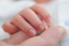 最近では4人に1人が「授かり婚」で出産している
