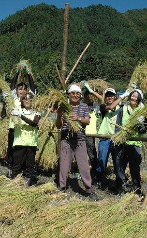 収穫を喜ぶ地元やボランティアの人たち=2013年9月24日、大槌町小鎚の小鎚第5仮設団地