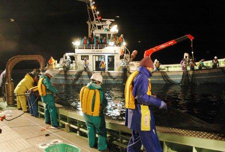 定置網の網起こしをする乗組員=2013年11月14日午前3時30分、大槌町の大槌湾