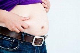 脂肪と共に去りぬ