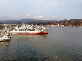 サメの水揚げ日本一の気仙沼港(2014年3月撮影)