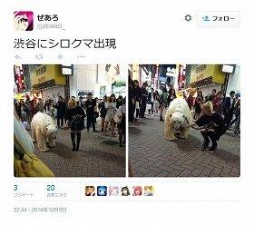 「平和な日本に恐怖を与えてやる!」 「テロリスト」「白クマ」騒動はキャンディーのプロモーションだった