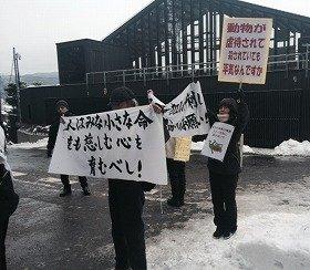 諏訪大社カエル串刺し神事に抗議 動物愛護団体「許すことのできない残虐行為」