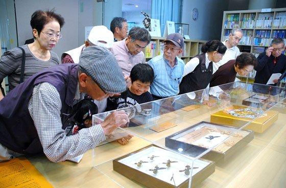 標本を鑑賞する見学者=2014年10月4日、大槌町中央公民館
