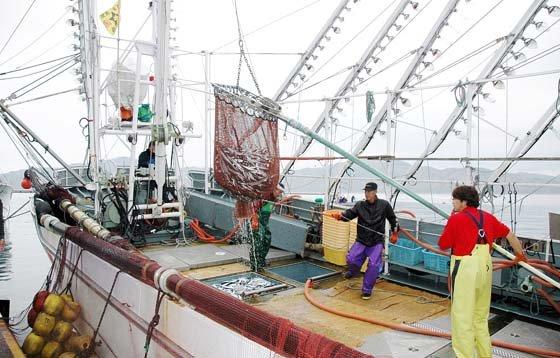 魚市場にサンマを水揚げする第六十三若竹丸=2014年11月12日、大槌港
