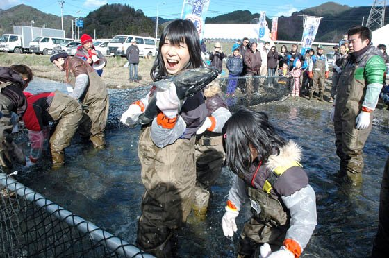 サケのつかみどりは5分間の制限時間で行われました=2014年12月7日、大槌川河川敷