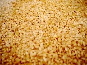 確かに「茶色い米」ではあるが...(画像はイメージ)