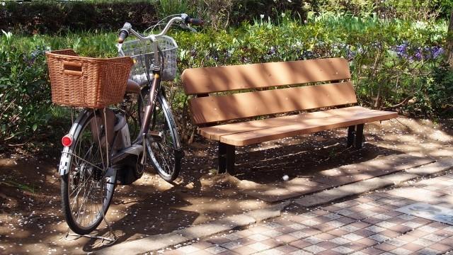加藤茶、歩くのが遅く「自転車の前カゴに乗せて」 45歳年下妻の発言でネット騒然、真相は...