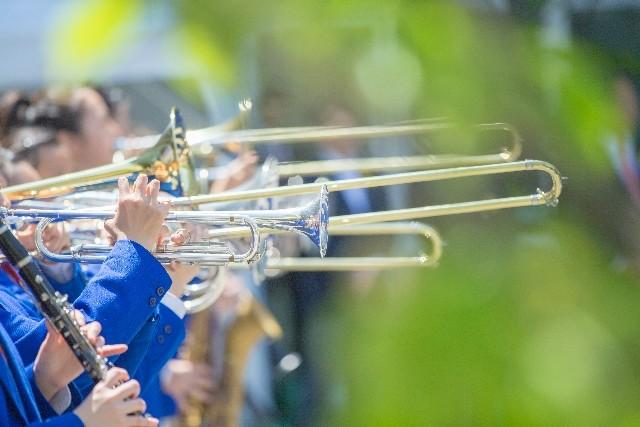 管楽器には細菌がウヨウヨ 英国でバグパイプ奏者が肺炎で死亡