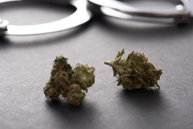 「大麻で町おこし」って問題ないの? 「所持で逮捕」社長が免許をとれた訳
