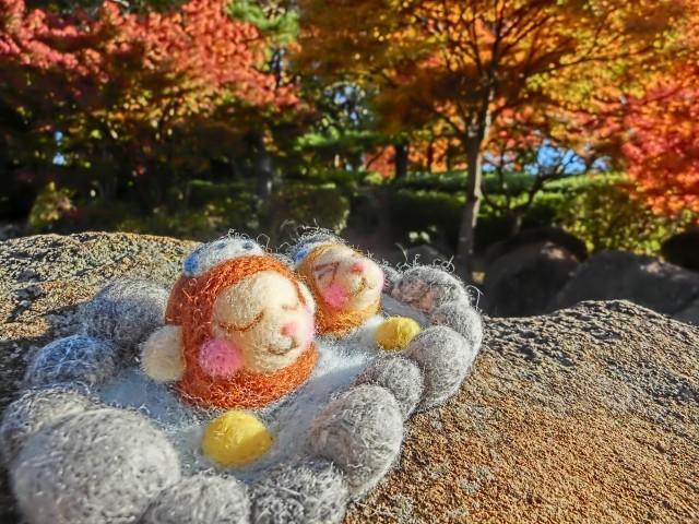 親子一緒でお風呂の「適切年齢」 松本明子、32歳まで父親と入浴告白
