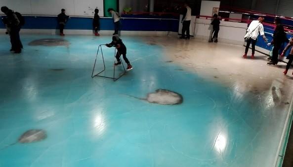 「残酷」スケートリンク謝罪、中止に 魚5000匹氷漬けの上を滑る