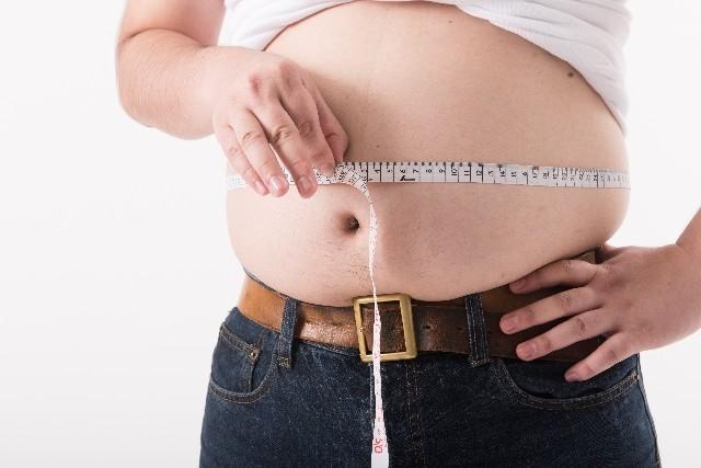太るとなりやすい11種類のがん 食道がん、すい臓がん、乳がん...
