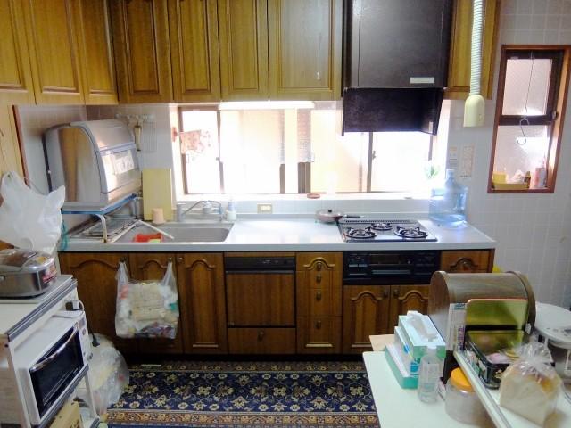 気づかないうちに台所で大量発生 小さいけど不気味な「シバンムシ」