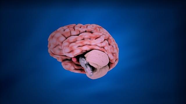 桂ざこば、脳梗塞で入院へ どんな病気だったのか