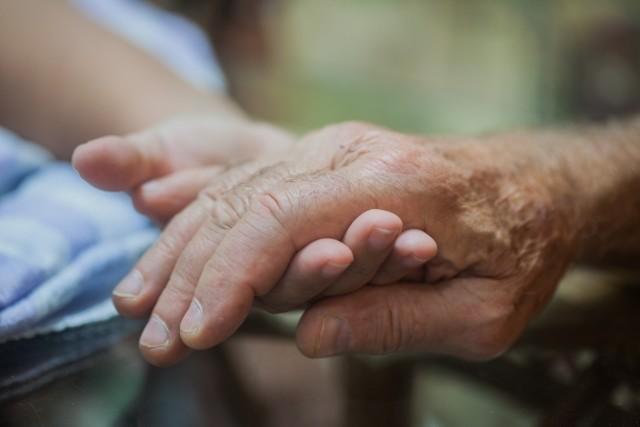 未届け有料老人ホームへの紹介は なんと病院やケアマネからが約7割