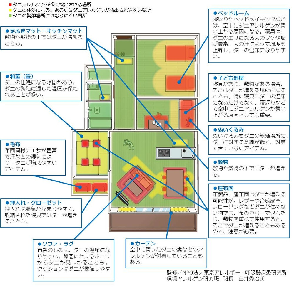 家の中の数億匹のダニはここにいる! 専門家が監修、ハザードマップ公開