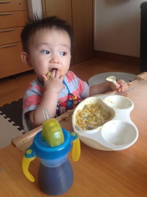 食べ物をよくかむ子は頭が良くなる! 東京医科歯科大がマウスの実験で実証