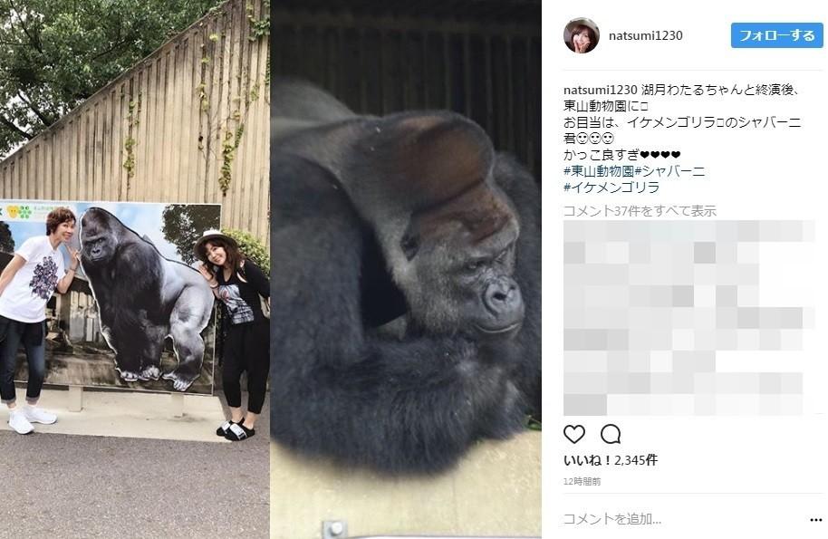 小川菜摘、イケメンゴリラ公開 「旦那さんですやん」と総ツッコミ